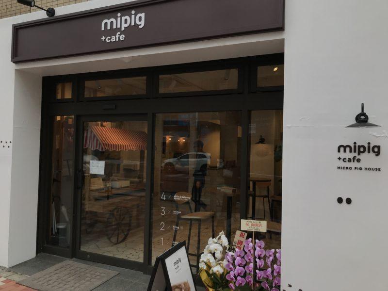 マイピッグカフェ(Mipig Cafe)